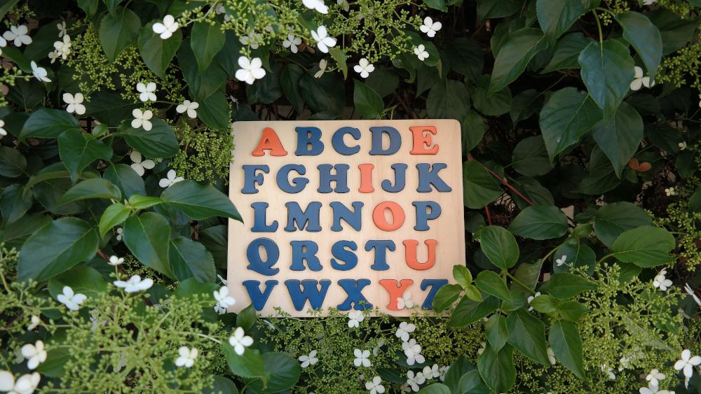 puzzle alphabet voyelles orange Cornaline et consonnes bleu Agrion